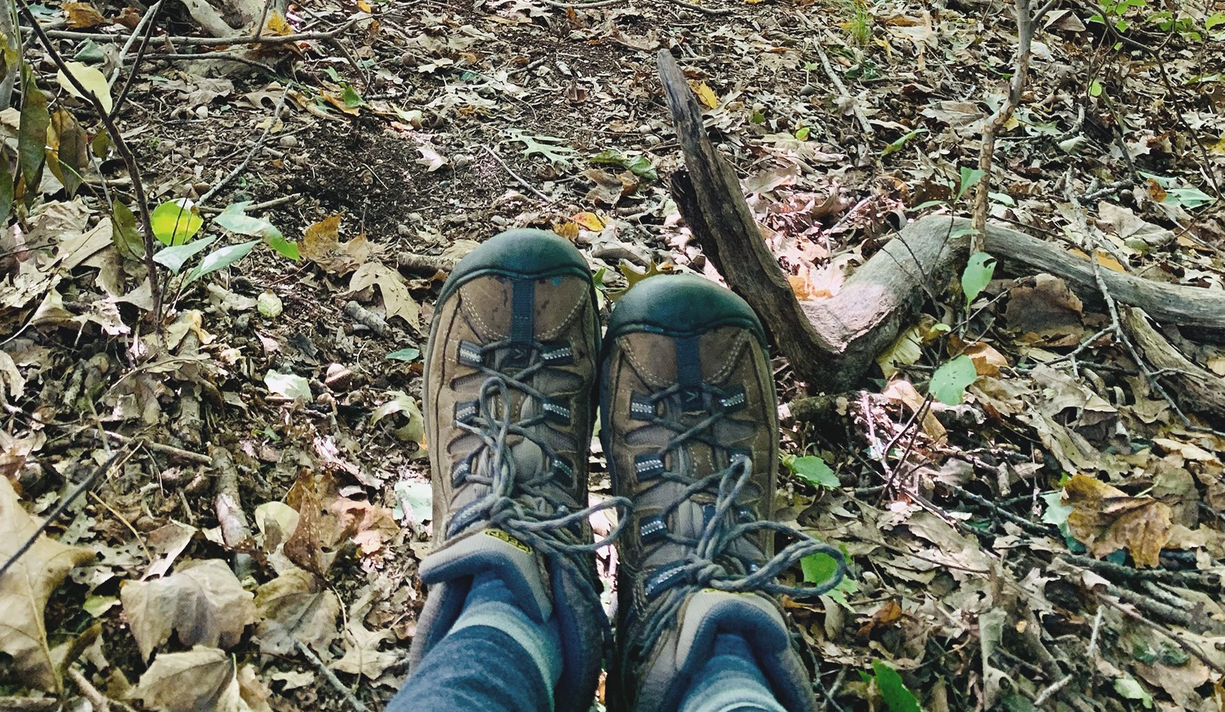 hiking boots on the trail in fall leaves